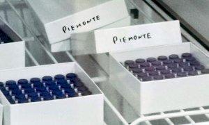 Al via le vaccinazioni anti Covid nelle strutture del Consorzio Socio-assistenziale del Cuneese