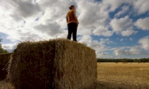 Coldiretti: ''Sempre più giovani piemontesi scelgono l'agricoltura''