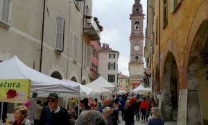 Savigliano, tentata rapina nella farmacia in piazza Santarosa