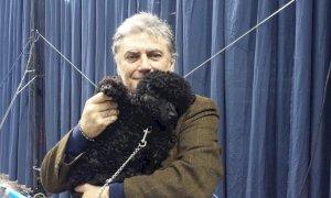 Cuneo, Lauria chiede l'installazione di fontane nelle aree per cani