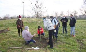 In provincia di Modena un bosco in memoria dei cinque giovani morti nell'incidente di Castelmagno
