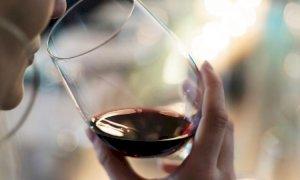 Coldiretti Cuneo: ''Bene il dietrofront UE su etichette vino e promozione di carni e salumi''