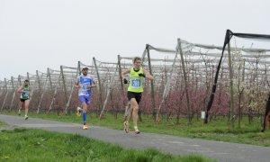 Il 21 marzo torna la Mezza Maratona del Marchesato