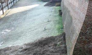 Fossano, studenti e Protezione Civile puliscono la scarpata di viale Sacerdote