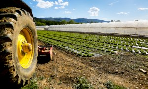 Qualità dell'aria, Coldiretti Cuneo: ''No al blocco delle attività agricole''