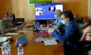 Il Consiglio provinciale tra i divieti di pesca e il piano di abbattimento dei cormorani