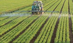 Coldiretti sul piano regionale per la qualità dell'aria: ''Misure penalizzanti per l'attività agricola''