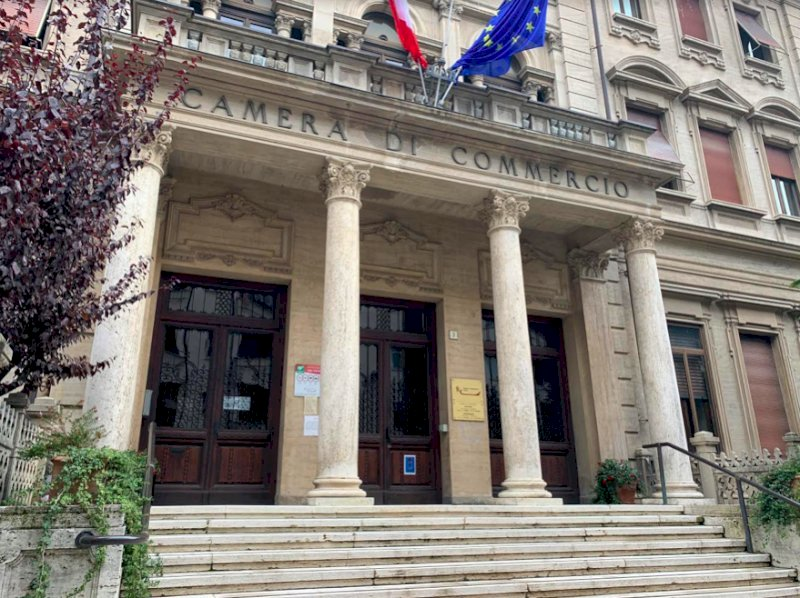 Nel 2020 in provincia di Cuneo sono nate 737 aziende a conduzione femminile