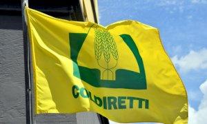 Consumi, Coldiretti: