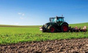 Psr Piemonte, un bando da due milioni per lo sviluppo di progetti pilota nelle filiere agricole