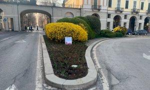 Dal Castello di Pralormo 3 mila bulbi di tulipani per la città di Cuneo
