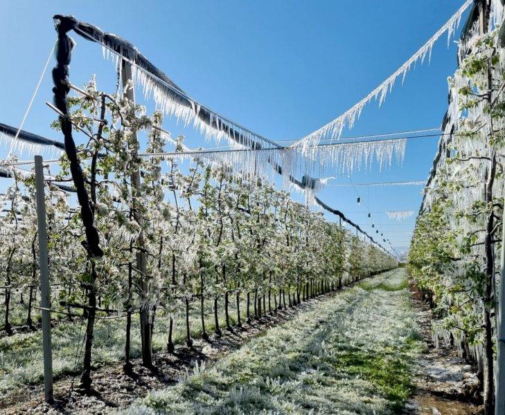 Due giorni di freddo da record, i dati dell'Arpa: nella Granda fino a sei gradi sotto zero in pianura
