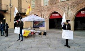 Tigli di corso Colombo a Fossano, i Radicali: