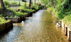 Un appello per conservare la qualità dell'acqua della Granda