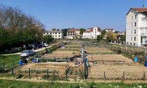 Alba, consegnati 77 orti urbani e avviati progetti educativi e sociali