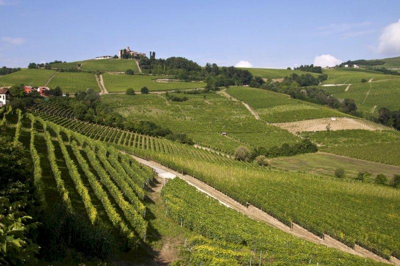 """Coldiretti Piemonte: """"Per la vera ripartenza serve far tornare i turisti stranieri"""""""
