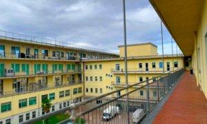 Coronavirus, Piemonte: il bollettino di martedì 4 maggio