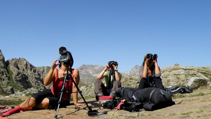 Volontari impegnati in attività di monitoraggio della fauna - foto A. Rivelli