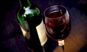 Meno alcol e più acqua nel vino, la reazione della Ciaburro all'ultima idea di Bruxelles