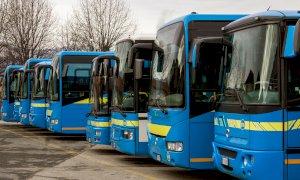 Gli autobus del Consorzio Granda Bus gratuiti per chi va a vaccinarsi