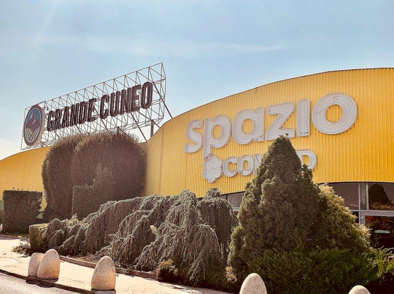 Vicino all'ex Auchan un mega centro sportivo per la pratica di oltre venti discipline?