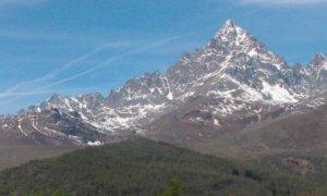 Intorno al Monviso: tre video-incontri online in occasione della Giornata mondiale della biodiversità