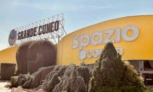 """Il progetto di un mega centro sportivo all'ex Auchan non convince Lauria: """"Non credo ai regali"""""""