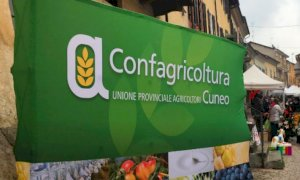 Il saviglianese Giacosa confermato presidente della Federazione dell'impresa familiare di Confagricoltura