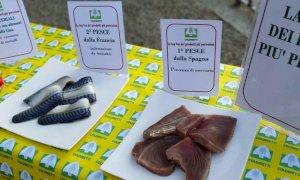 Giornata del cibo sicuro, Coldiretti: