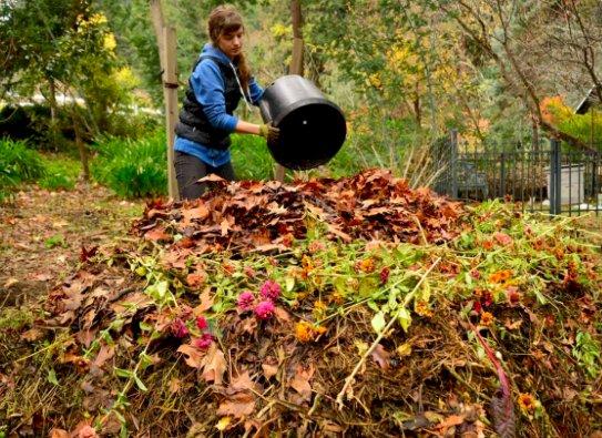Da Csea corsi di formazione sul compostaggio domestico per tutti i cittadini