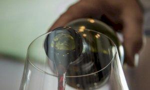Princìpi attivi fitosanitari nei vini: se ne parla in un webinar il 24 giugno