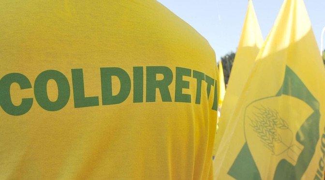"""PAC, Coldiretti Cuneo: """"Con accordo su piani strategici nazionali si va verso la riforma"""""""