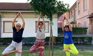 Savigliano, un nuovo albero in piazza Galateri donato dall'Unione induista