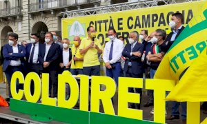 PD e Fratelli d'Italia in piazza a braccetto per chiedere il contenimento dei cinghiali (c'è pure Cirio)