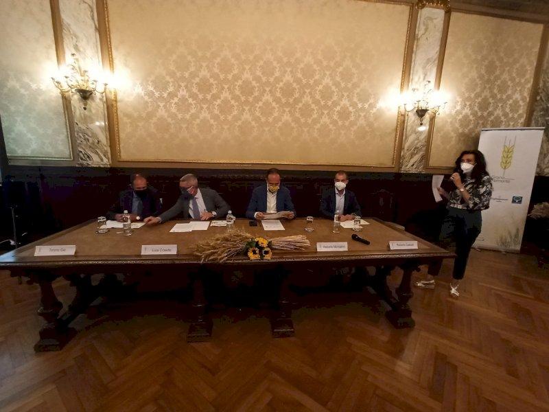"""Dall'unione di quattro grani nasce """"Grano Piemonte"""", una nuova eccellenza del """"Made in Granda"""""""
