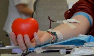 Carenza di sangue in provincia di Cuneo, l'appello dell'Avis