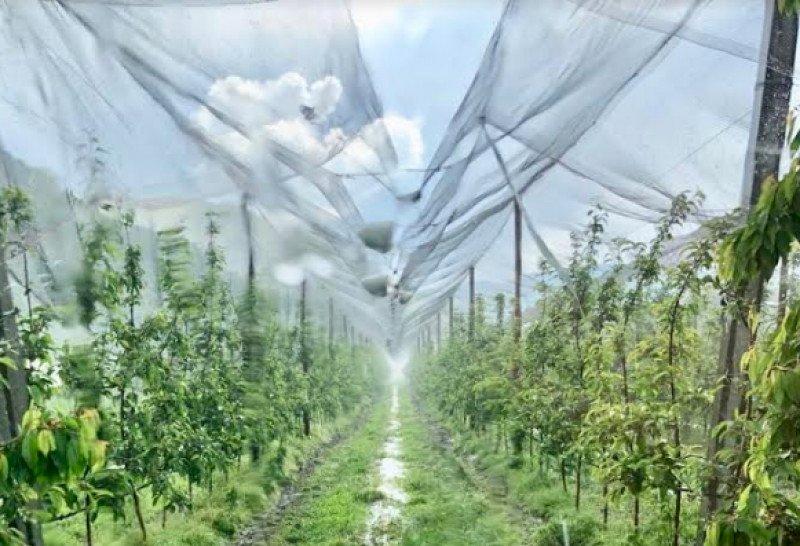 """""""Il clima cambia, va cambiata anche l'agricoltura perchè possa adattarsi"""""""