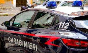 Sgominata dai Carabinieri una banda di ladri composta da 12 sinti piemontesi