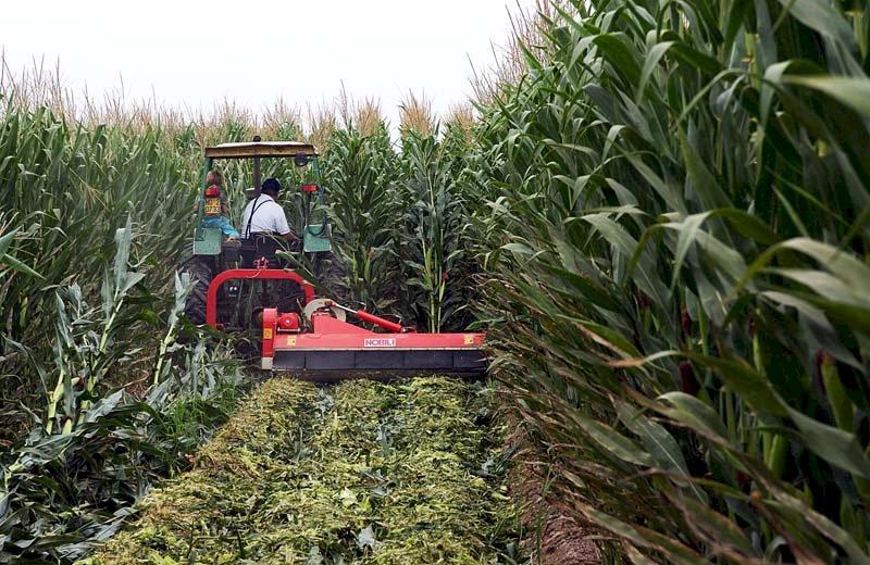 In arrivo 21 milioni di euro in più per l'agricoltura piemontese