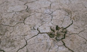 La siccità continua in Piemonte: solo la prossima settimana le prime piogge diffuse