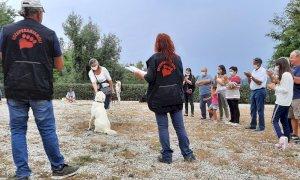 A Cherasco il 19 settembre una giornata dedicata ai cani