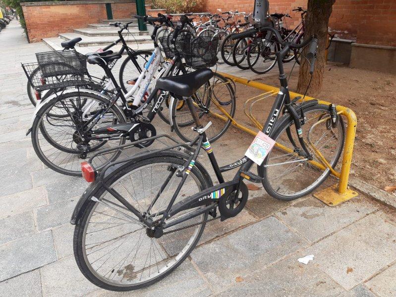 """Il Cuneo Bike Festival prende il via con """"Bike to School"""""""