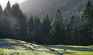 Valle Pesio, studenti di Scienze Forestali al Pian del Creus per installare un pannello sulla lotta partigiana
