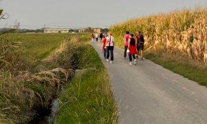 Cinque passeggiate naturalistiche con la guida di un esperto rivolte alle persone anziane