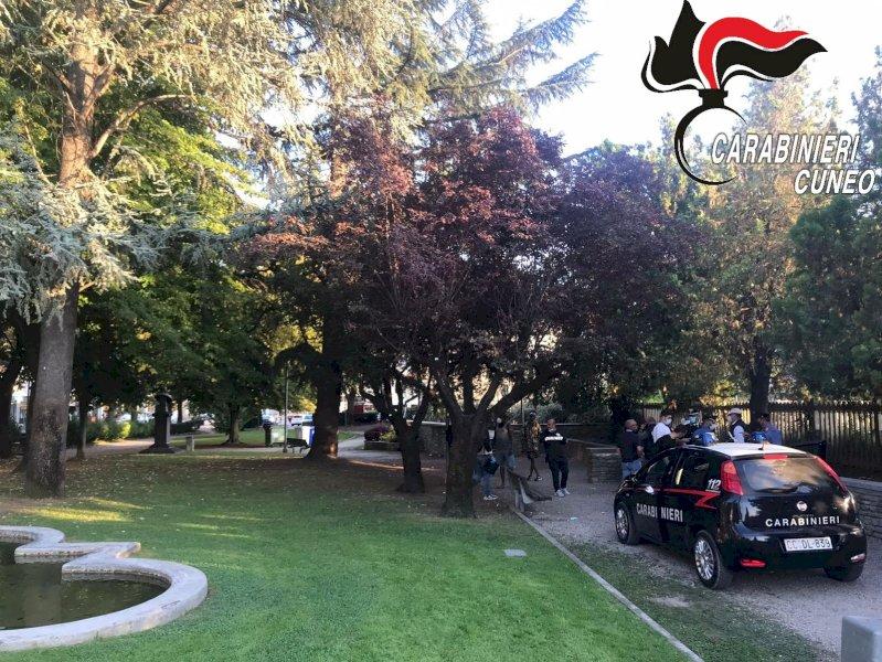 Alba, trenta fermati nei controlli dei carabinieri contro spaccio e degrado nei parchi