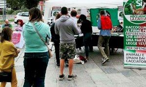 Referendum sull'abolizione della caccia, già raccolte 3mila firme in provincia di Cuneo