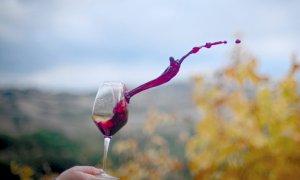 Dalla Regione 9,2 milioni per la promozione dei vini piemontesi di qualità nei paesi terzi