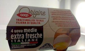 Uova, Coldiretti Cuneo lancia l'allarme:
