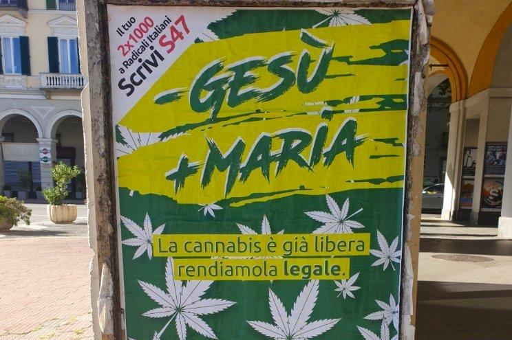 Sabato a Cuneo si raccolgono firme per il referendum sulla cannabis