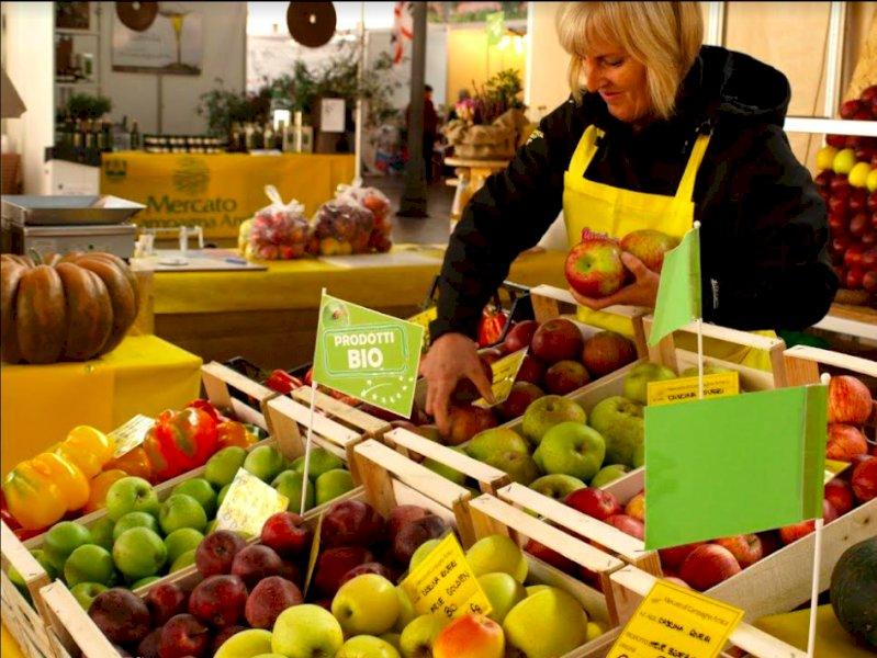 Cuneo, il mercato agricolo di Coldiretti sarà 'nel cuore' della Fiera del Marrone